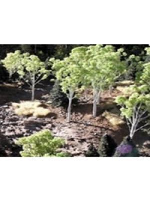 grand central gems t15 aspen trees