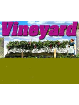 scenic express ca0110 grape vineyard o scale