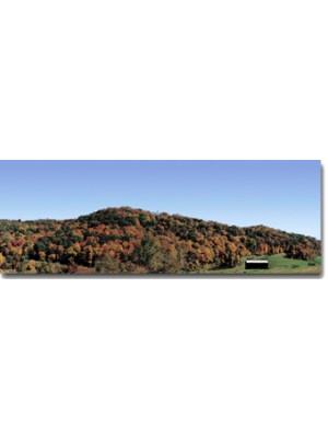 scenic express dq017 fall mountain scene right