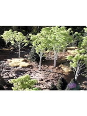 grand central gems 295-t14 small aspen tree