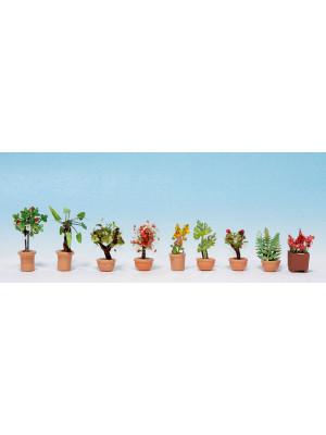 noch 14082 ornamental plants #5 pk