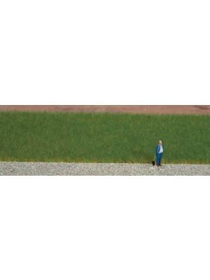 noch 7072 grass blend summer meadow