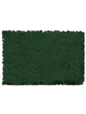 scenic express 815c forest green fine 64oz