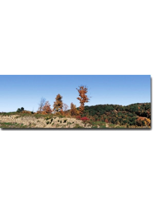 scenic express dq016 fall mountain scene left